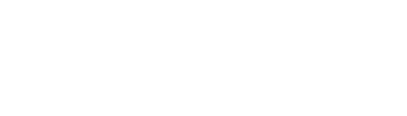 Professional Networking Association